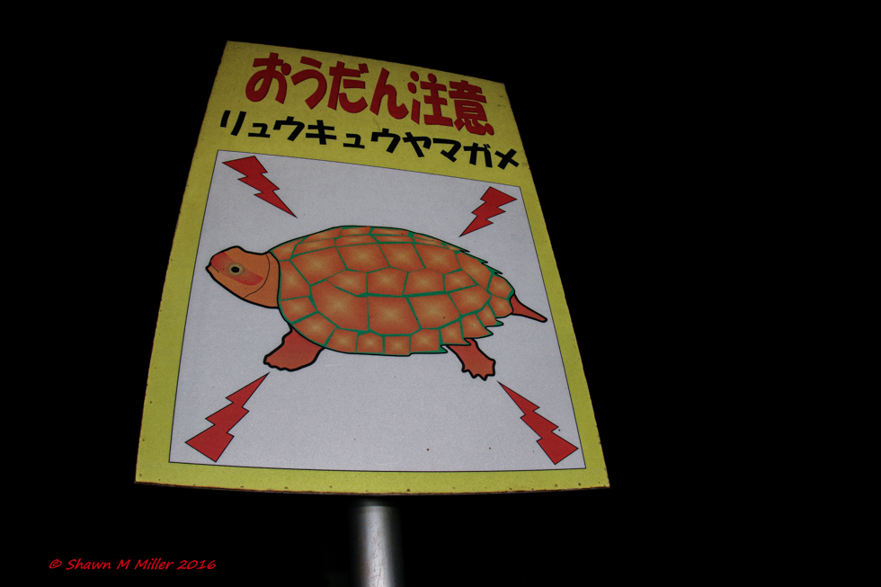 Wildlife crossing warning signs