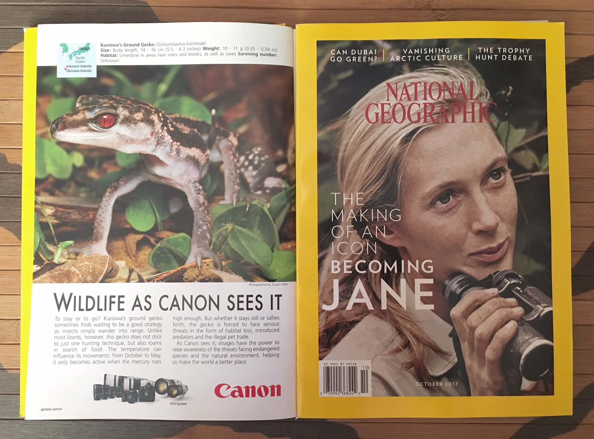 Featured- Wildlife As Canon Sees.  National Geographic October 2017