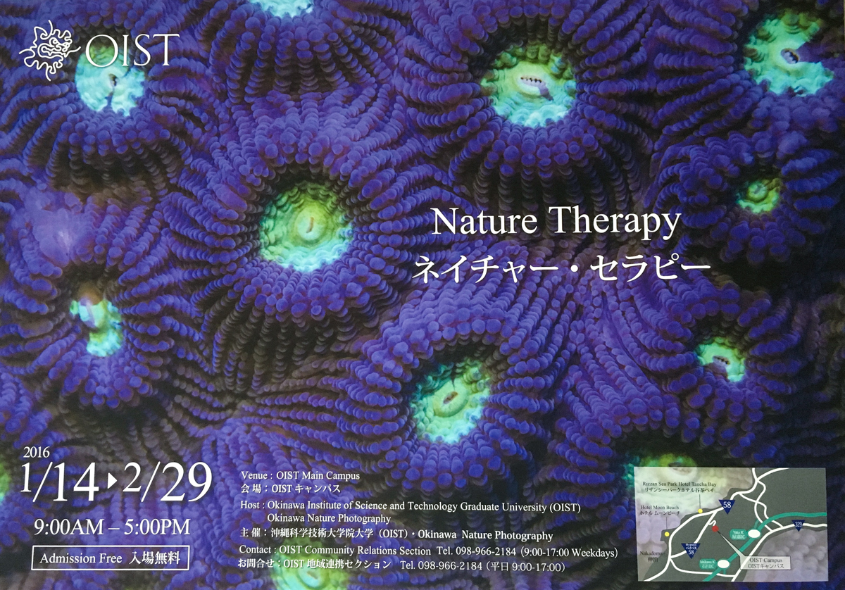 Nature Therapy poster 2016